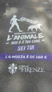 Nel 2017 il comune di Firenze ha avuto l improntitudine di verniciare sui  marciapiedi della città un messaggio distorto e volutamente offensivo per i  ... 6aadee4124